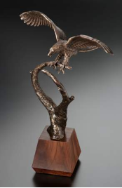 Magnificence Bronze Eagle Award