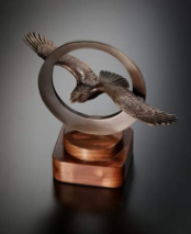 Circle of Excellence Bronze Eagle Award