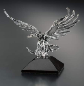 Free Flight Crystal Eagle Award