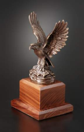 American Bronze Eagle Award