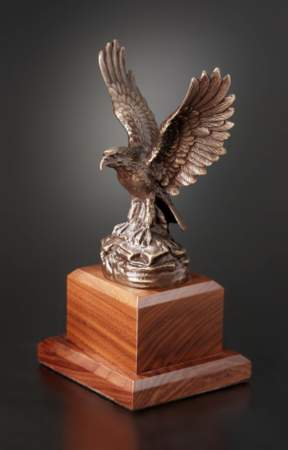 Bronze Eagle Awards