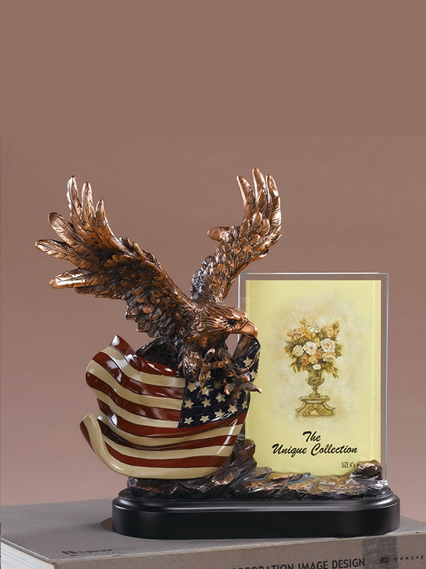 Bald Eagle on American Flag w/picture frame