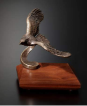 Soaring Bronze Eagle Award